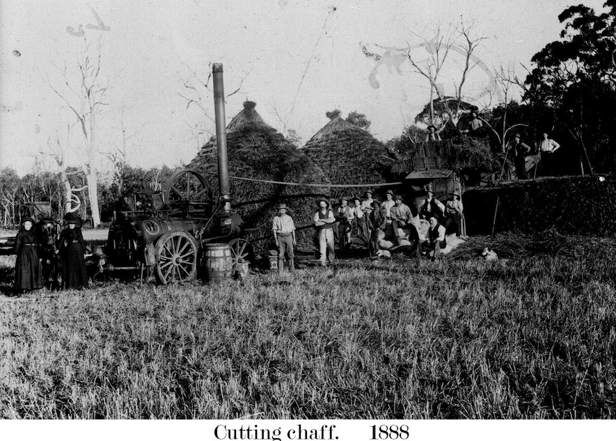 1888 Farm Cutting chaff - Glen Innes